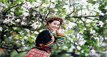 Tour Tây Bắc - Điện Biên mùa hoa ban 3 ngày 2 đêm
